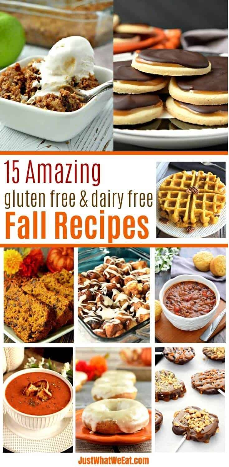 15 Amazing Gluten Free and Dairy Free Fall Recipes